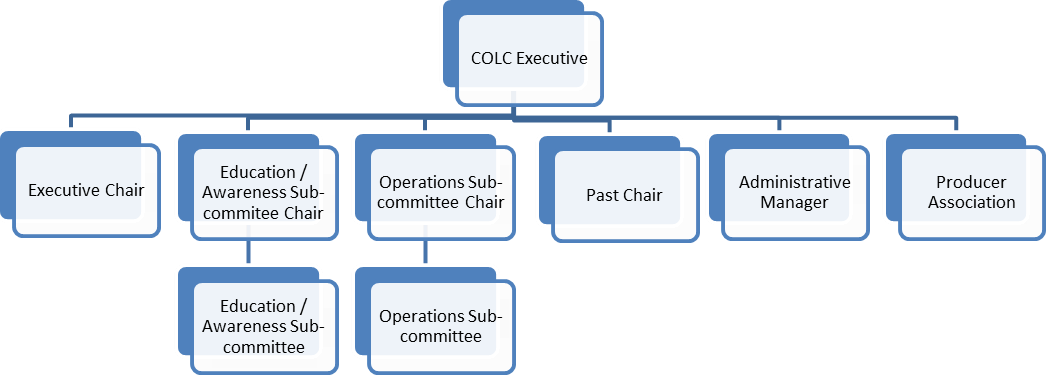 Executive Committe Structure
